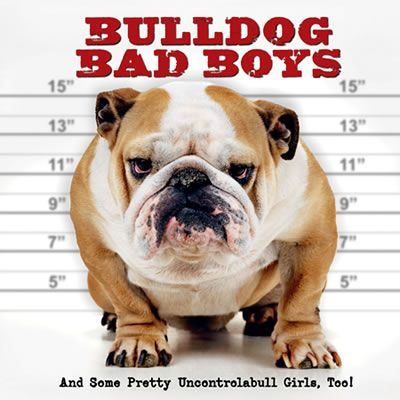 Bulldog Bad Boys This Book By Way Of Example And In The Spirit
