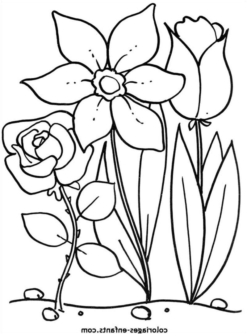 10 Incroyable Coloriage De Fleurs Photograph Coloriage Fleur Coloriage Fleur A Imprimer Fleur De Lys Dessin