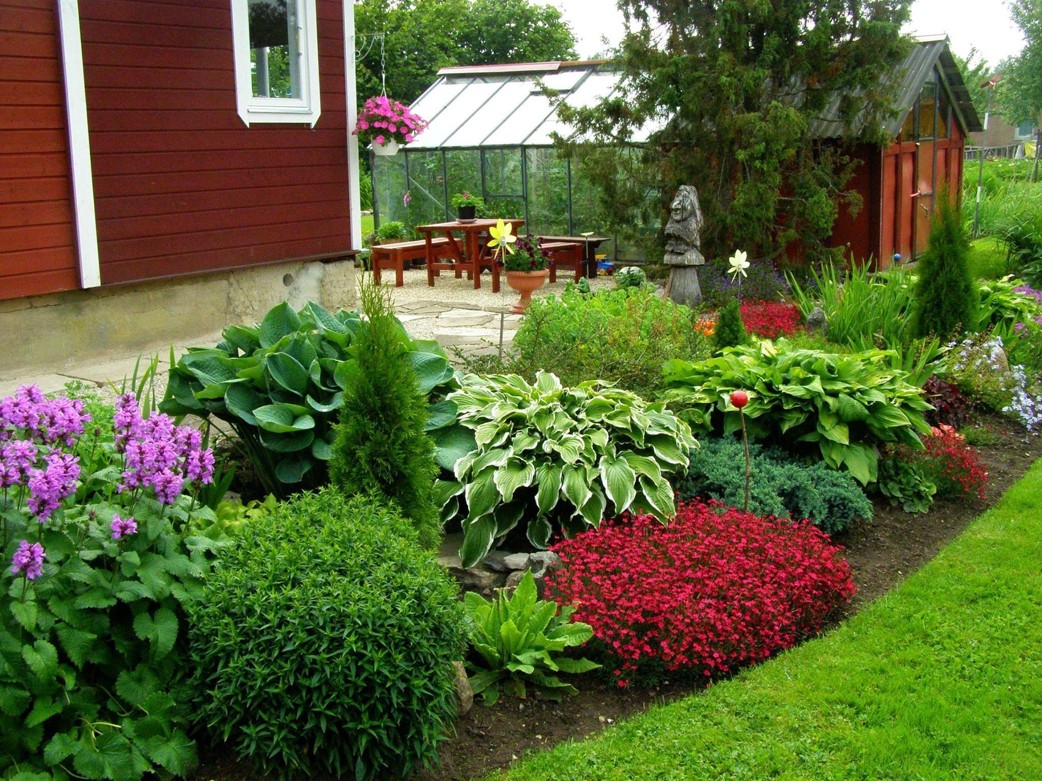 Viivi Raitma kaunis aed