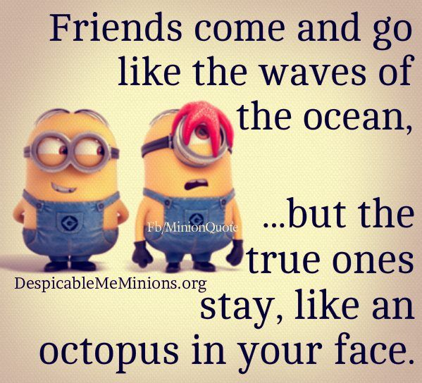 Friends Come And Go Minions Pinterest Minions Quotes