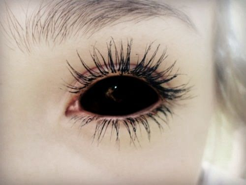 Black contacts for Halloween | albinatriba | Pinterest ...
