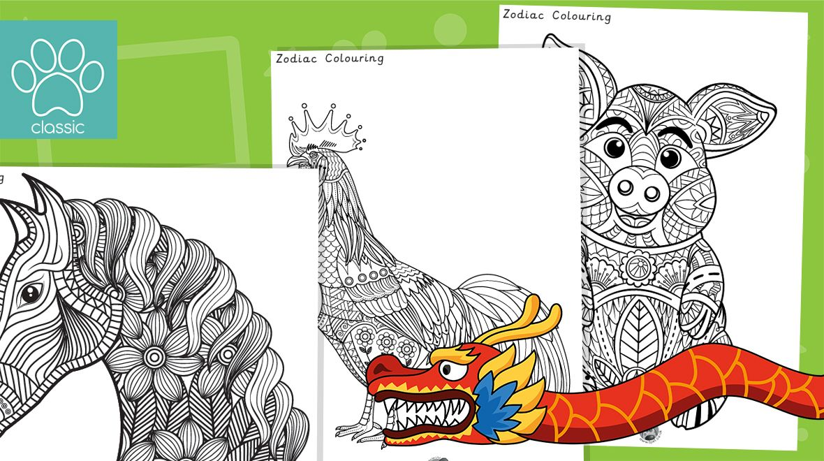 Chinese New Year Zodiac Colouring in 2020 Chinese new