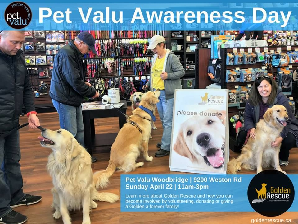 Golden Rescue Is Teaming Up With Our Friends At Pet Valu In Woodbridge 9200 Weston Road It Is Pet Appreciation Month At Pet Valu And Golden Res Pets Volunteer