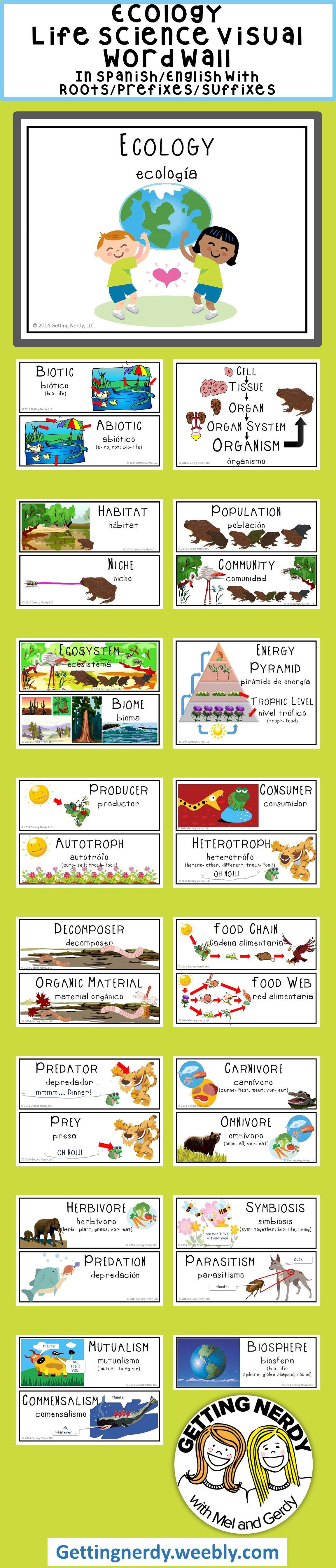 Worksheets Ecology Vocabulary Worksheet ecology word wall science vocabulary and walls pinterest searching for an engaging wordwall how about gettingnerdy with some 30 visual spanisheng