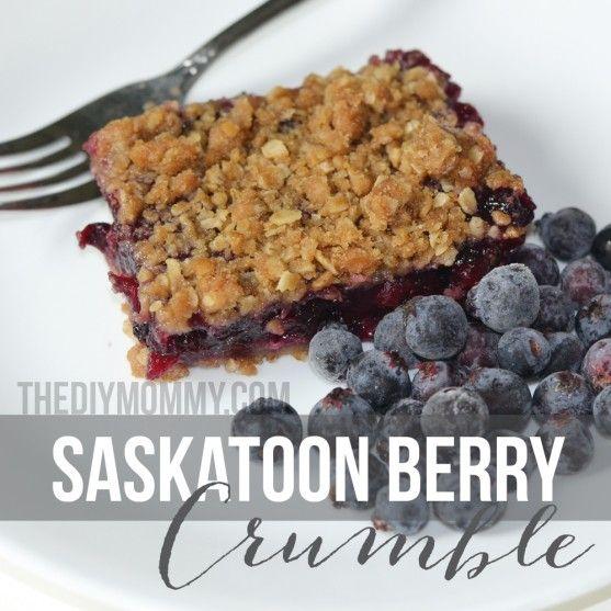 Saskatoon Berry Crumble | The DIY Mommy