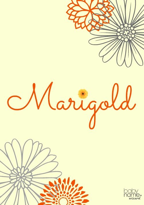 Marigold: Meaning, origin, and popularity of the name  These