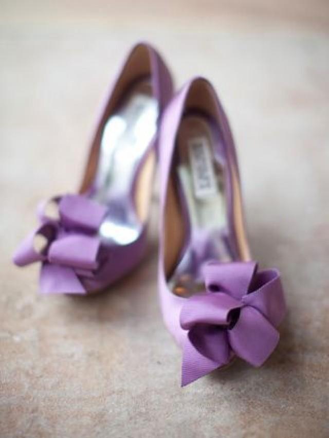 Todas las variedades de violeta | Kolor przewodni: fiolet ...