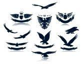 Aguila Imágenes De Archivo, Vectores, Aguila Fotos Libres De Derechos