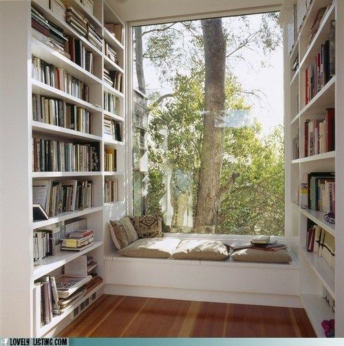 A perfect reading spot! Redo the loft and create a home library? Only with shelves under the reading bench and on both sides of my much smaller window.