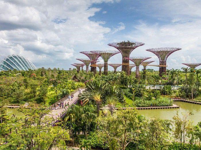 シンガポール、近未来的な植物園「ガーデンズ・バイ・ザ・ベイ(Gardens By the Bay)」