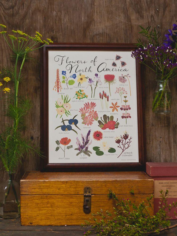 Flowers of North America Print | SMALL ADVENTURE