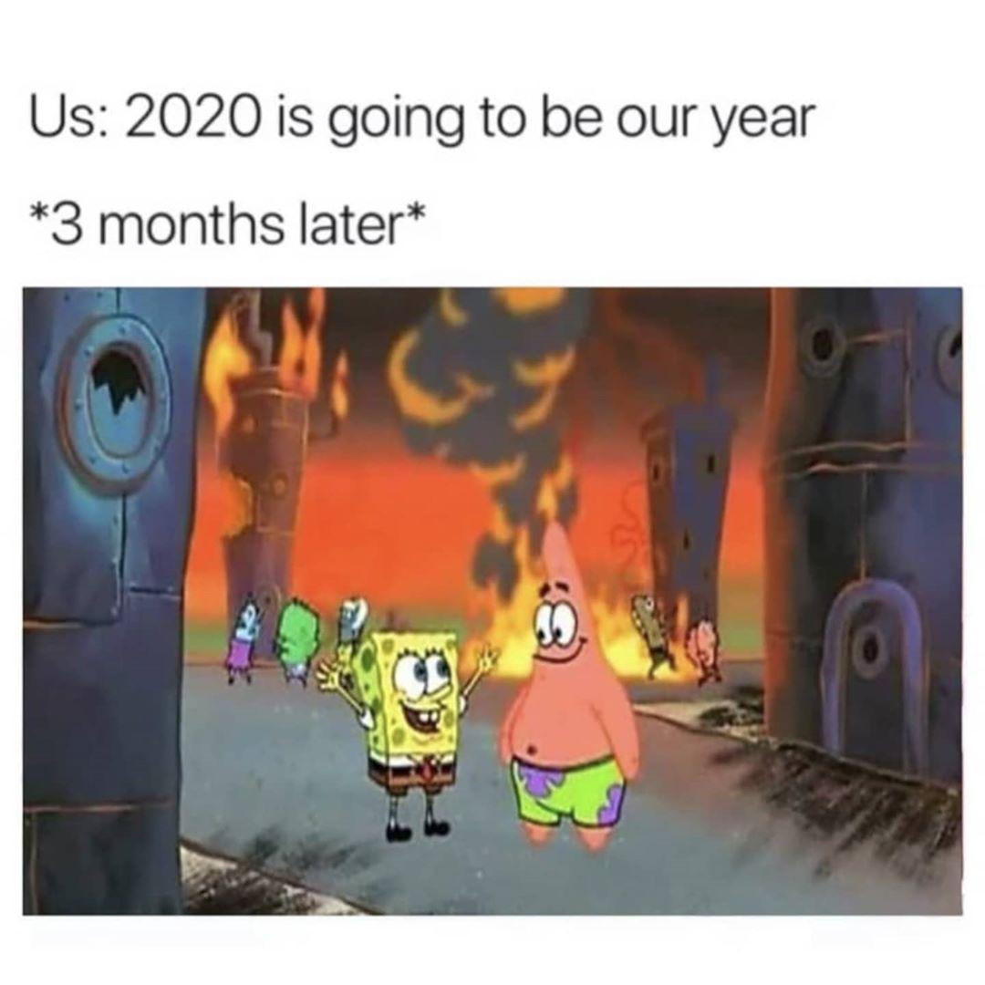 Catnoir Frozenelsa Miraculousladybug Onward Spongebob Wonderpark Spongebob Memes Edgy Memes Memes