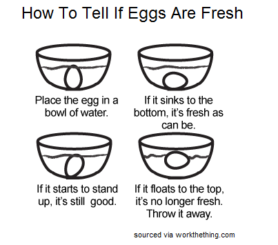 To tell, Eggs and Lunches on Pinterest