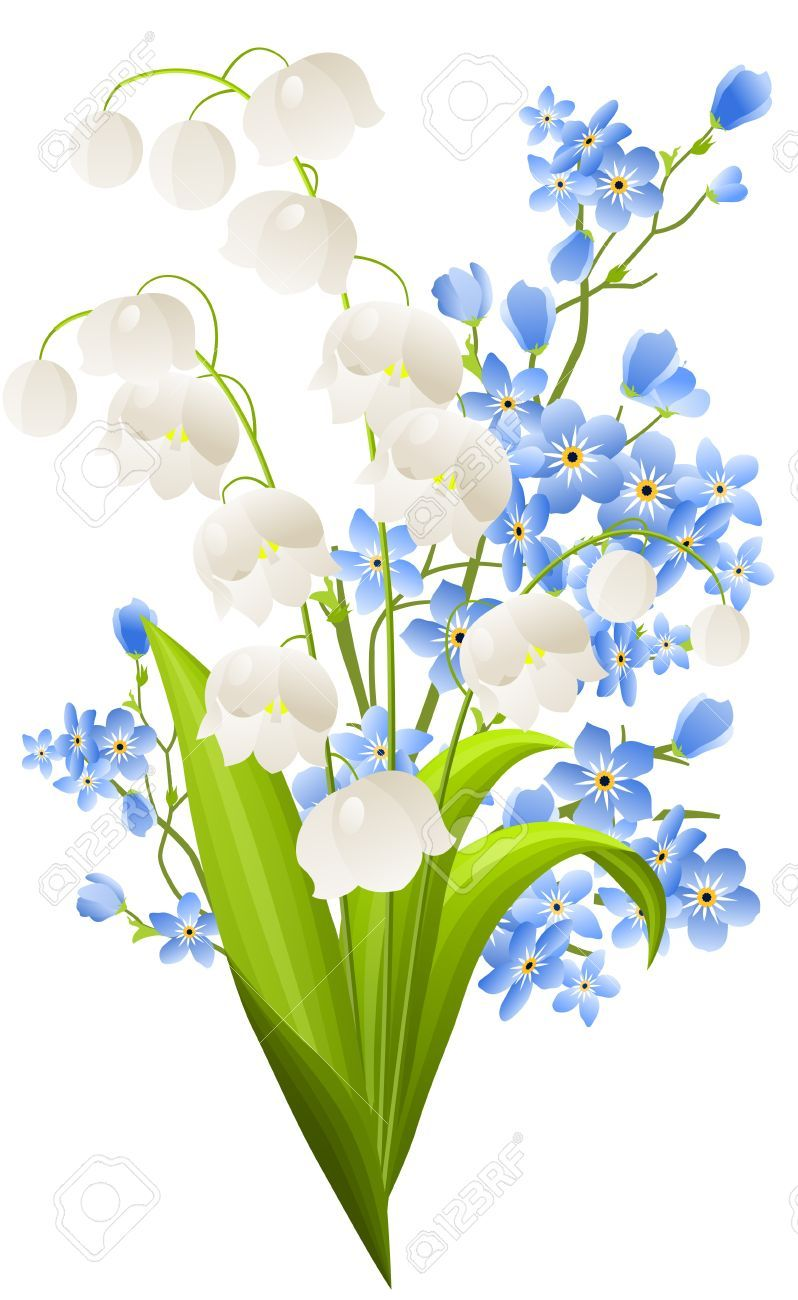 Pin by Susan KleinEngel on Clip art Lily of the valley