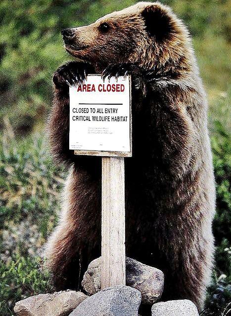 Area Closed! by David Valenzuela