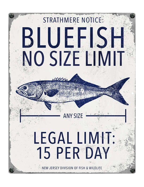 Strathmere Nj Blue Fish Fishing Regulations Ocean City Ocean City Nj Fishing Signs