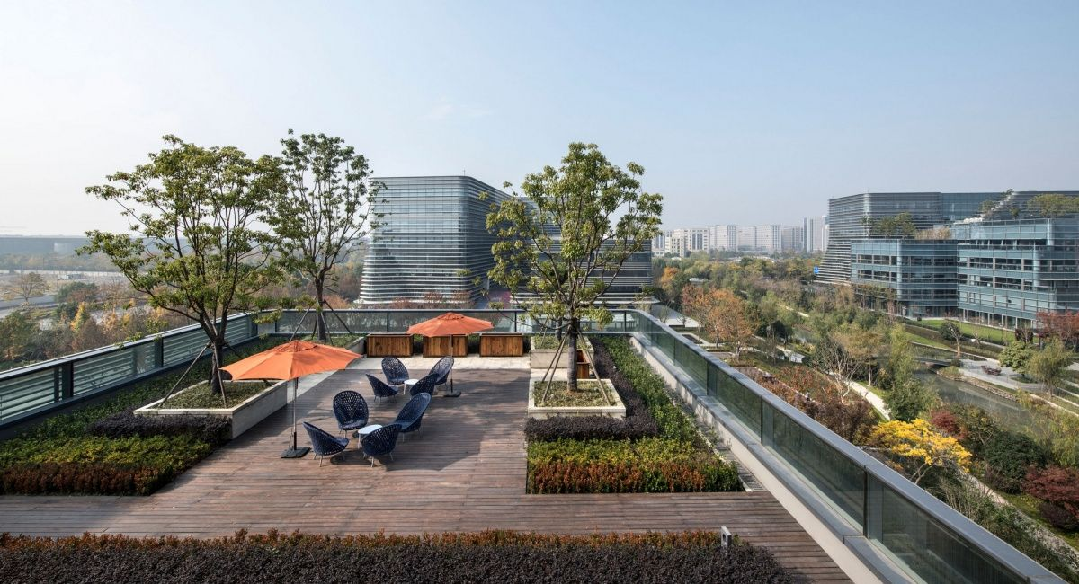 51 Credit Card Offices Hangzhou Office Snapshots Landscape And Urbanism Architecture Rooftop Design Roof Landscape