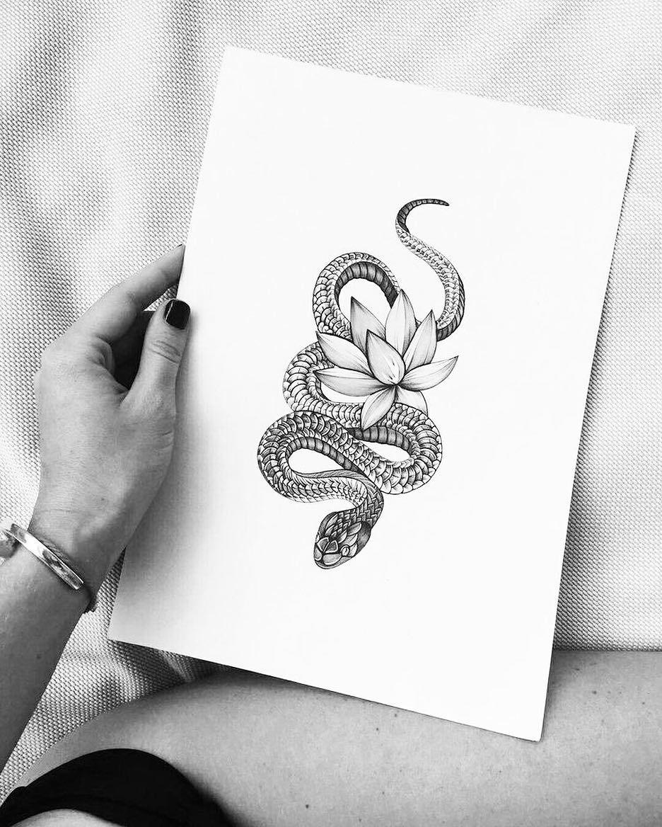 Amazon.com: drawing