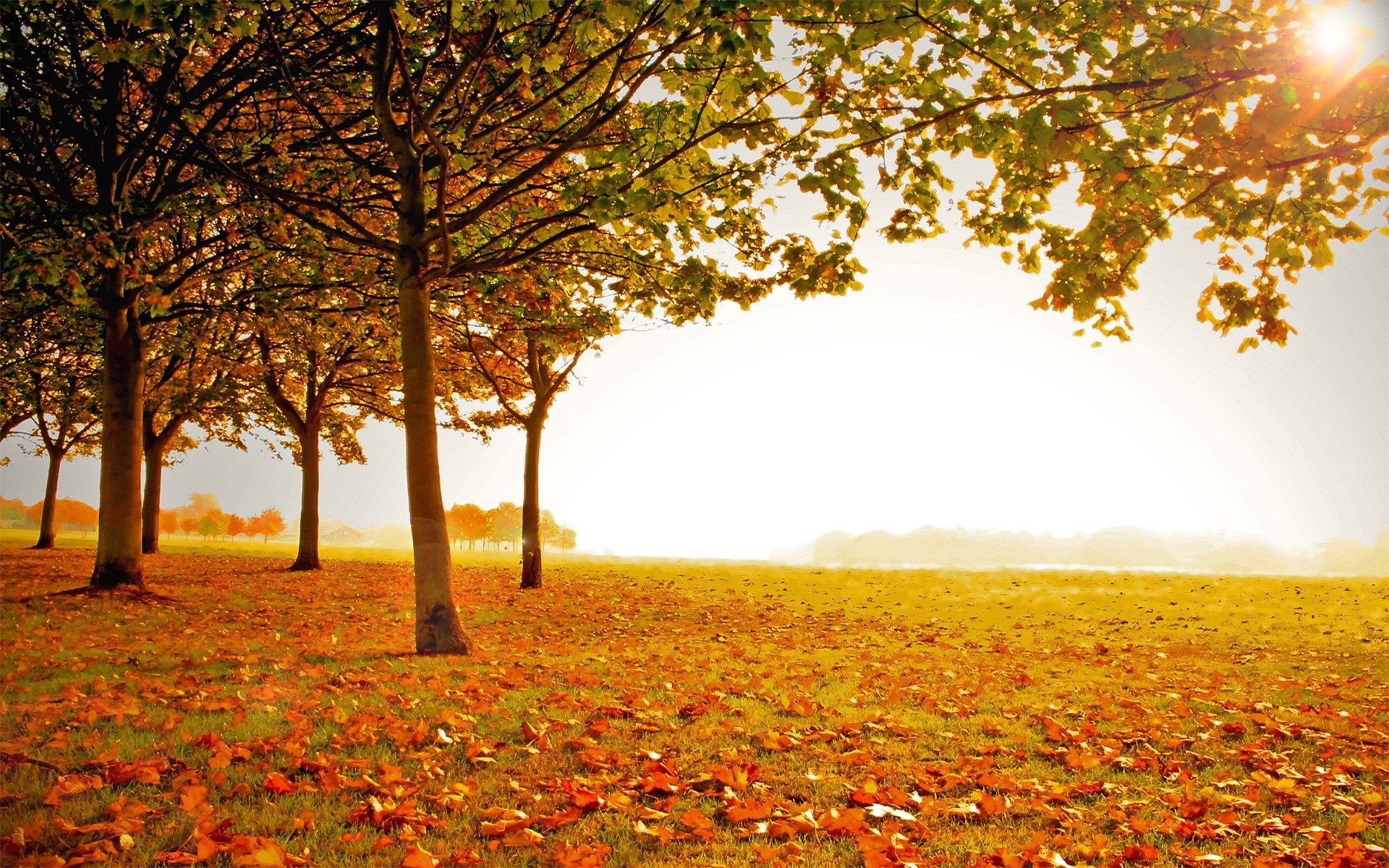 Fall High Resolution Desktop Backgrounds Autumn Landscape Fall Scenery Pictures Scenery Wallpaper