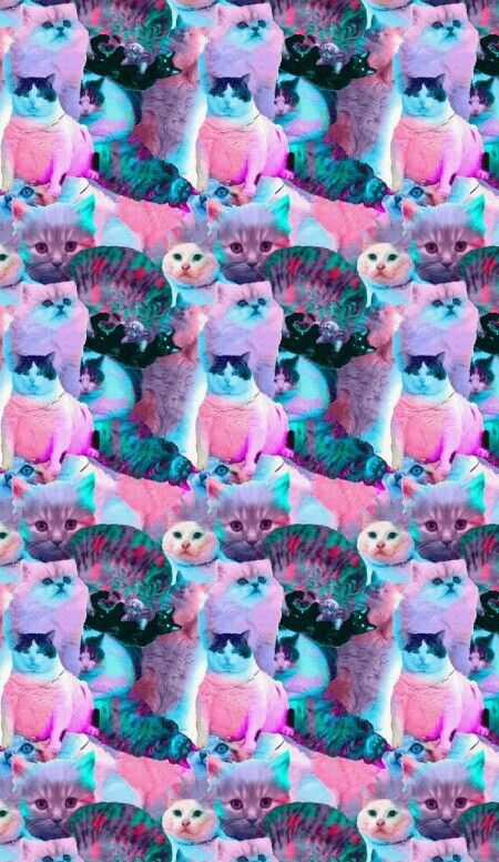 cat, background, and trippy image