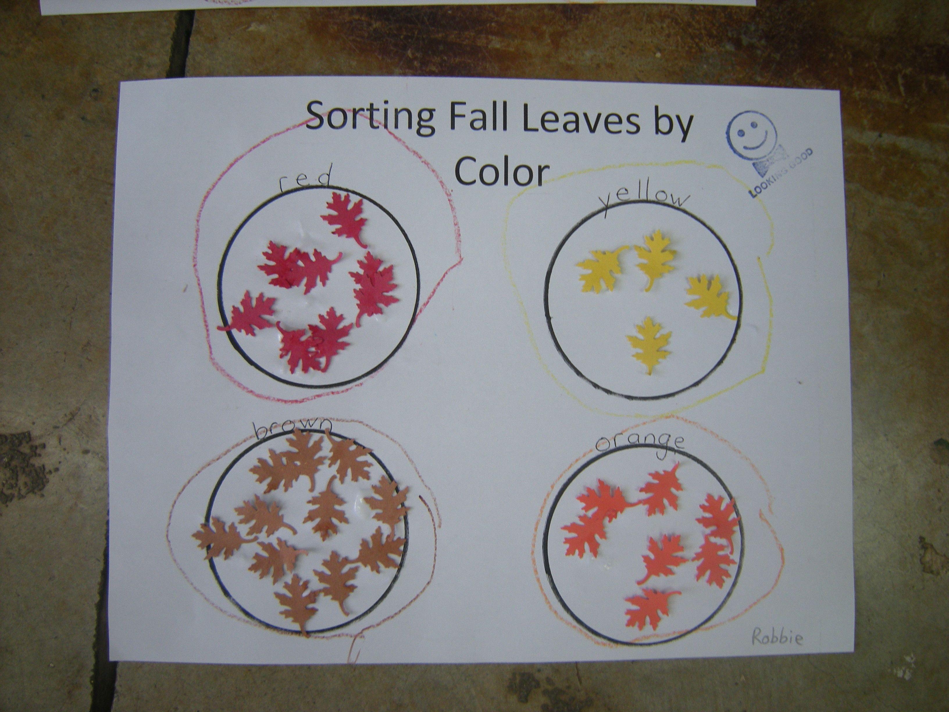Sorting Fall Leaves Worksheet