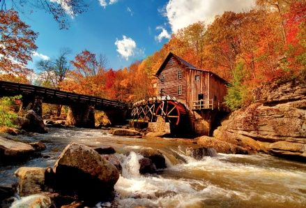 Free Live Wallpapers For Laptops Autumn Forest Watermill Windows 8 Wallpaper Click To View Fall Pictures Fall Wallpaper Autumn Wallpaper Hd
