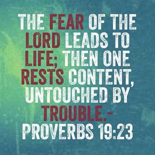 Proverbs 19 | Proverbs 31 Wanna-be
