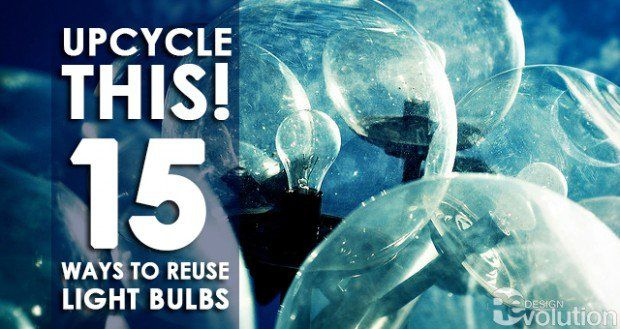 """In this """"Upcycle This!"""" we learn 15 ways to reuse light bulbs into decorative pieces and how to repurpose their functionality through DIY tutorials."""