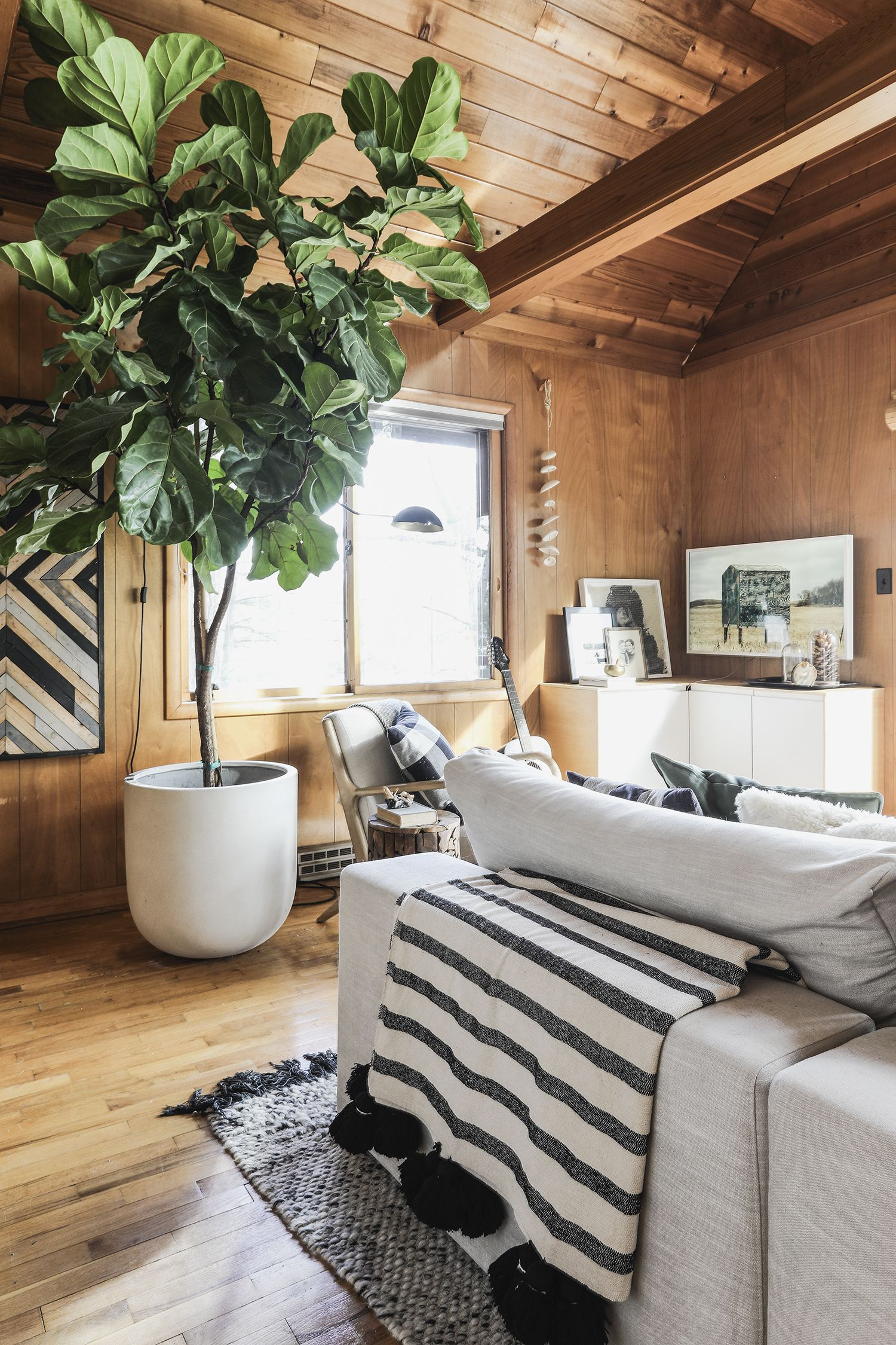 Photo of Three Years of Loving the Cabin – Deuce Cities Henhouse