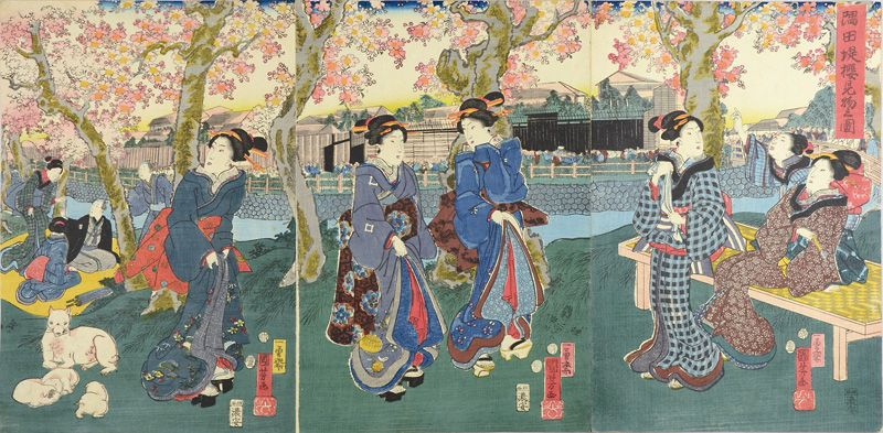 Cherry Blossoms in Full Bloom on the Banks of the Sumida River by Kuniyoshi / 隅田堤櫻見物之図 国芳