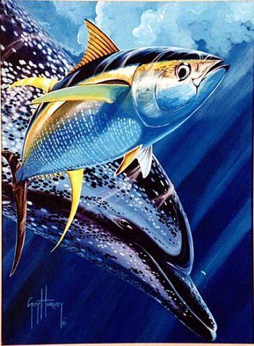 Guy Harvey Tuna Image Search Results Guy Harvey Art Sea Life Art Fish Art