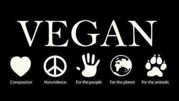 vegan facebook cover photos google search love the earth