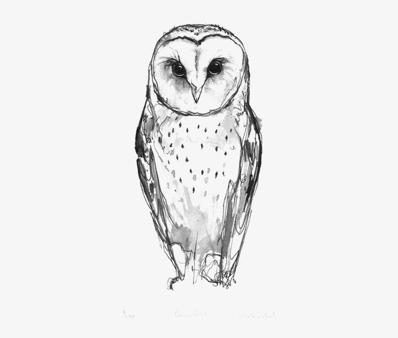 Download Australian Drawing Barn Owl Small Barn Owl Tattoo For Free Nicepng Provides Large Related Hd Trans Barn Owl Tattoo Owl Tattoo Small Snow Owl Tattoo