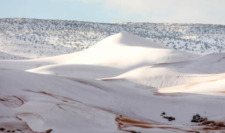 Photo of Sahara Desert covered in 15 inches of SNOW as freak weather blankets sand dunes