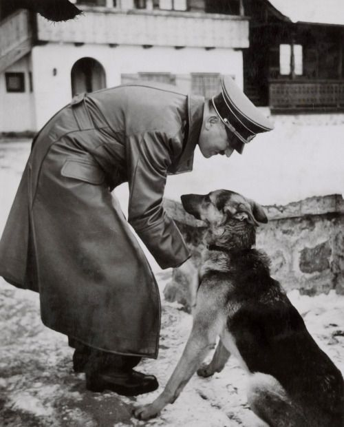 Adolf Hitler and Blondie, his Alsatian. He poisoned her before committing suicide.