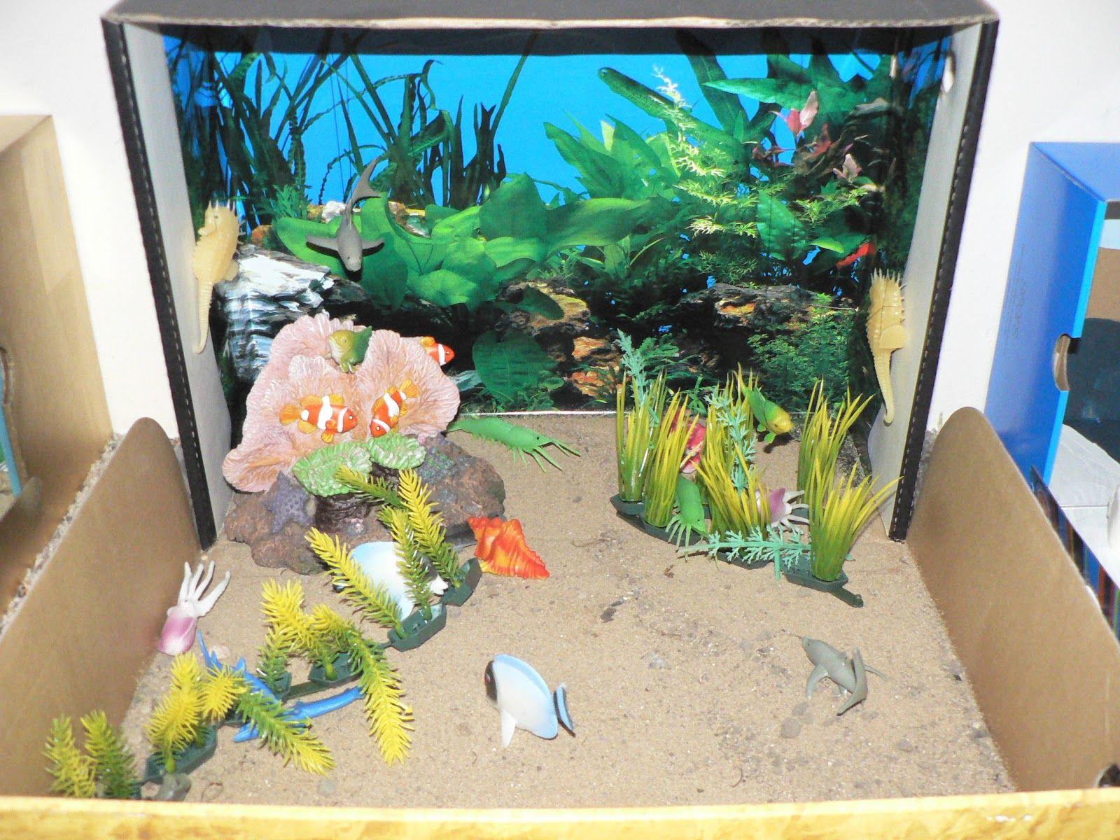 Animal habitat diorama schooling at home happenings for Habitat container