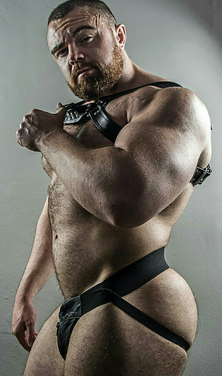 Fascinating muscle bears