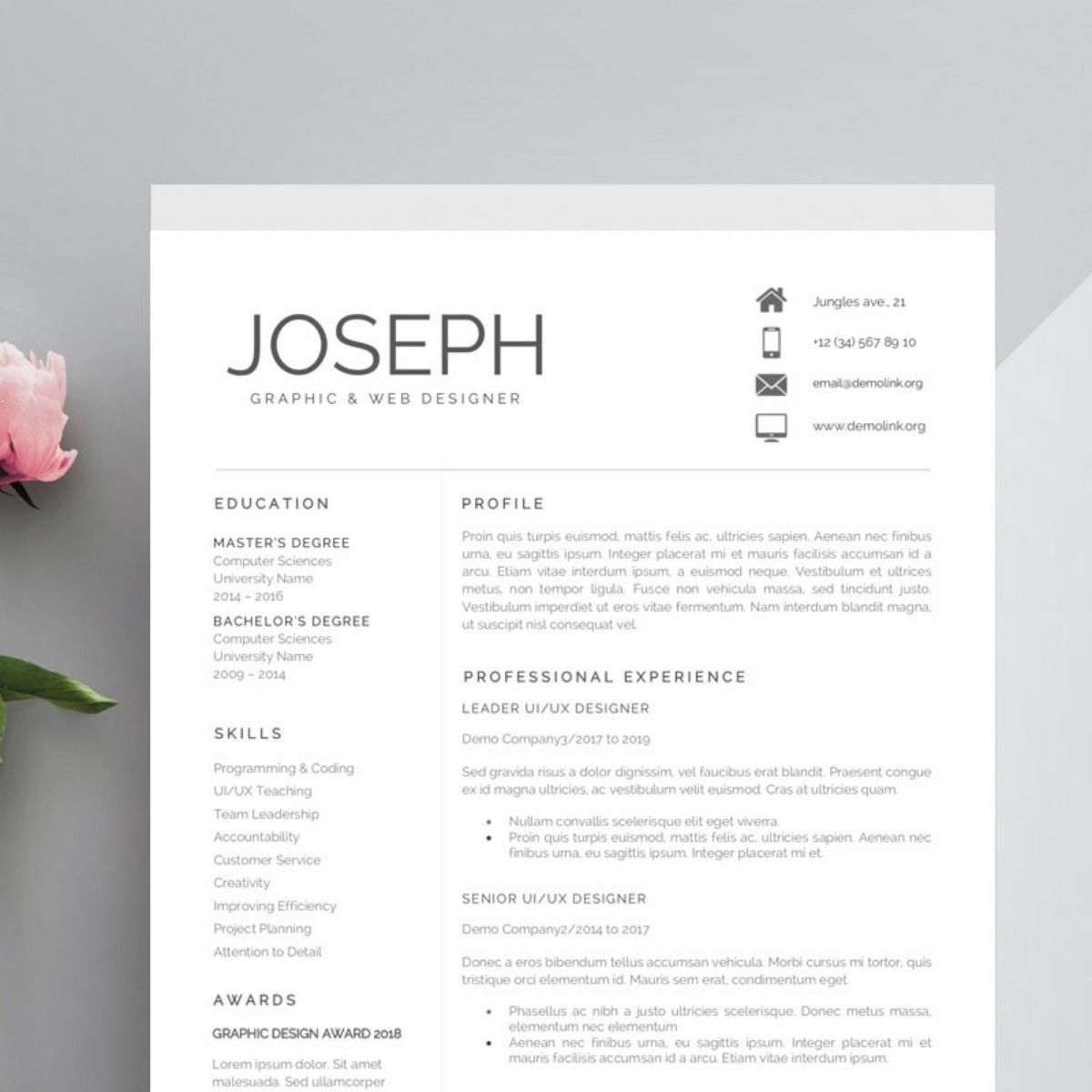 28+ Quick and easy resume examples trends