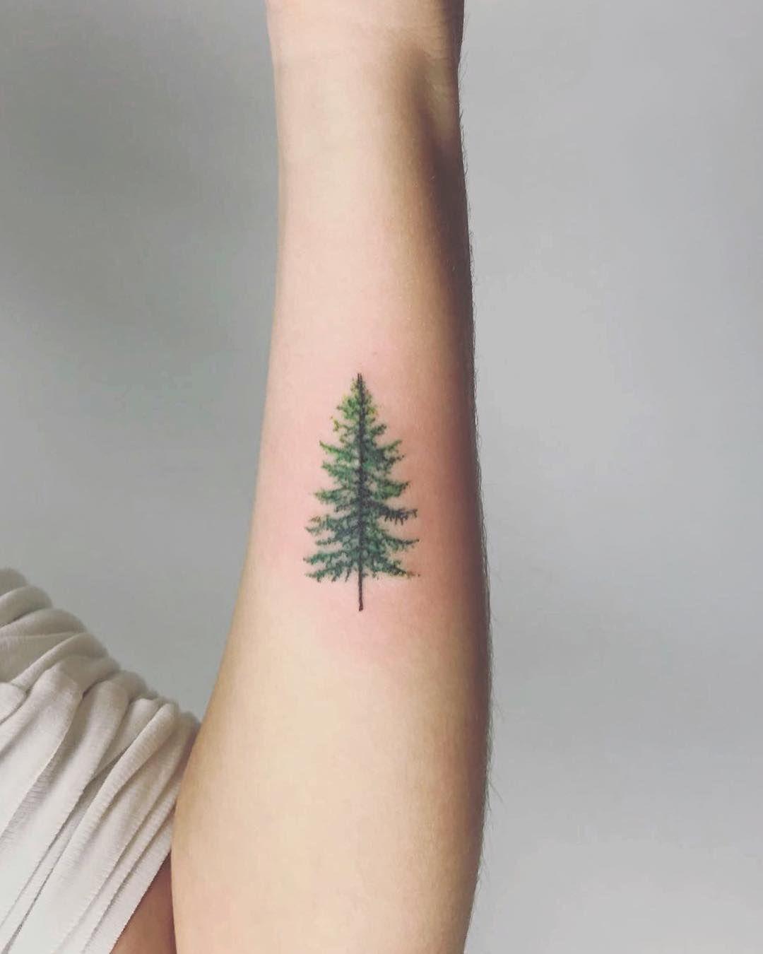 Christmas Tree Tattoo Small.Everlasting Evergreen Yinked Tattoo Tree Sleeve