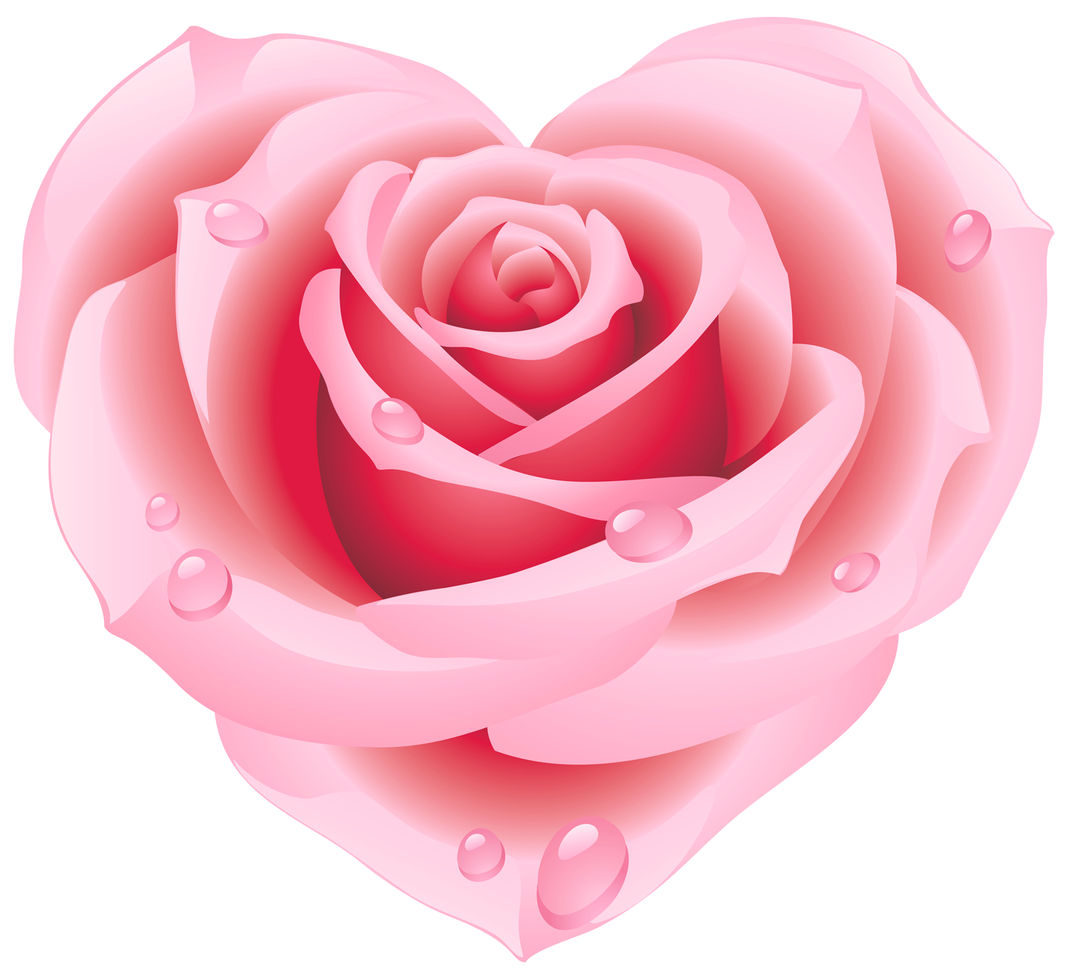 Heart rose. Large pink clipart cute