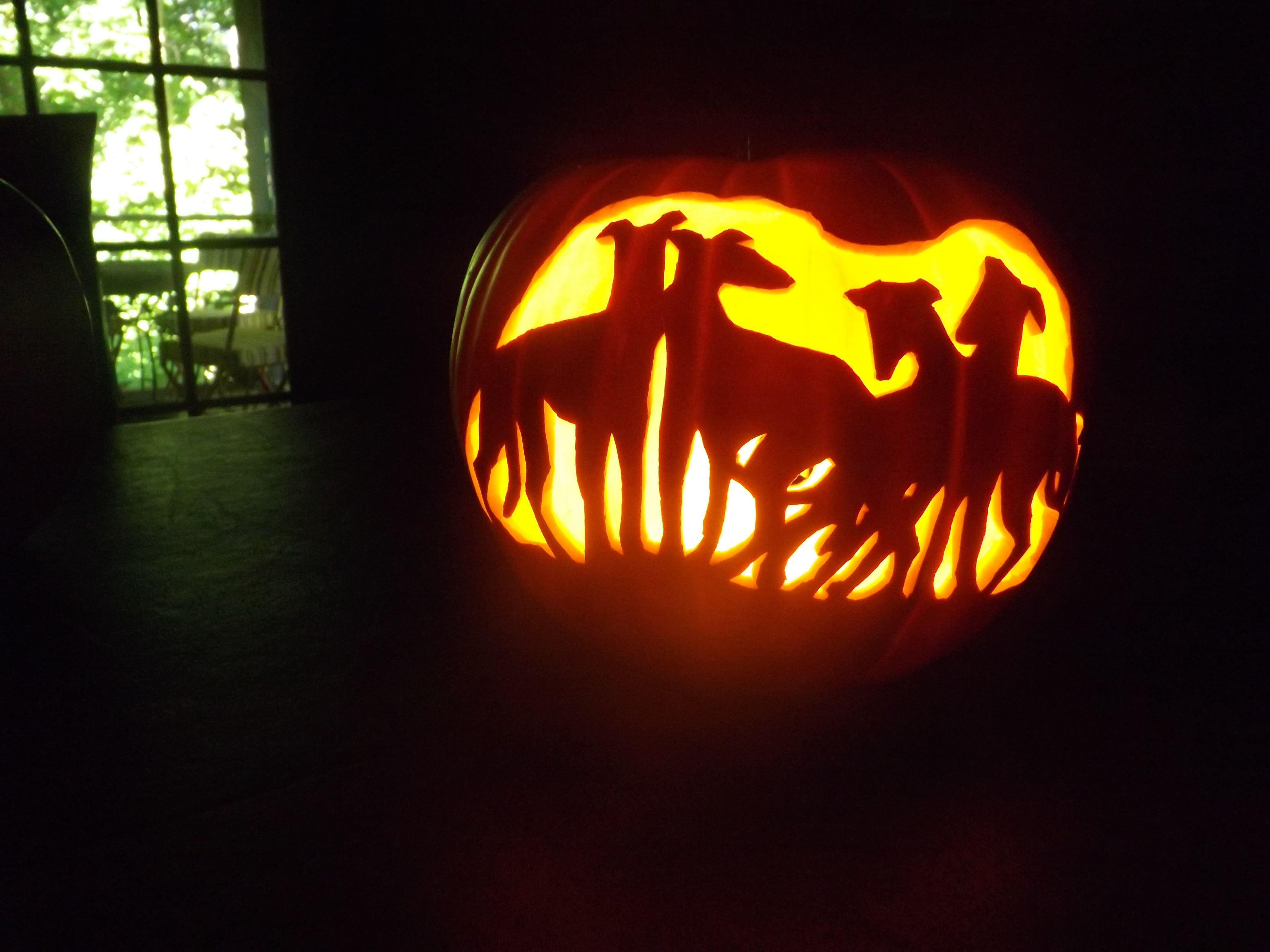 Pumpkin with Greyhound silhouettes from Dewey Beach years ago