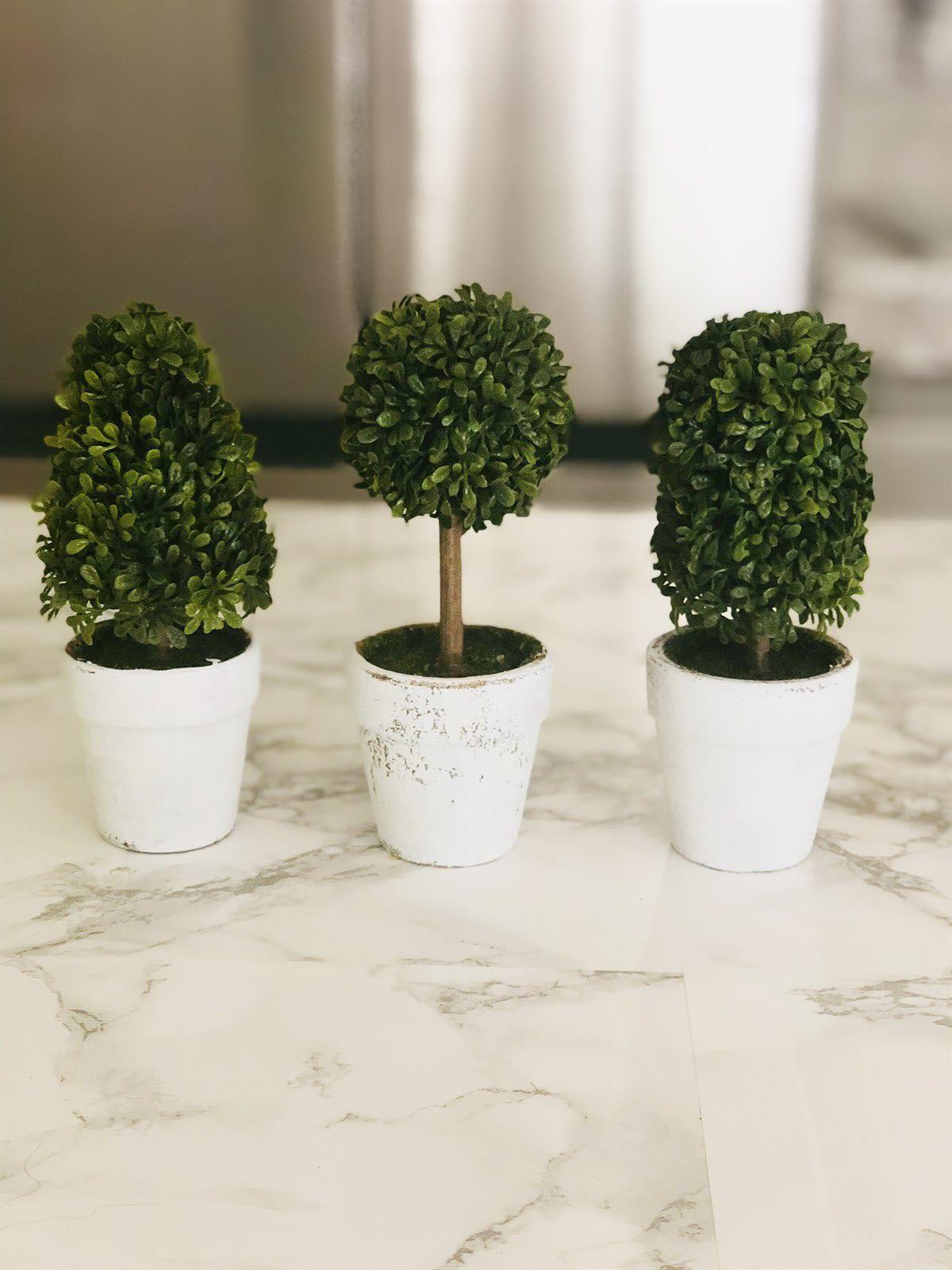 Mini Topiary Trees Set Of 3 Topiary Trees Topiary Decor Topiary