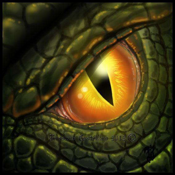 Yellow dragon eye