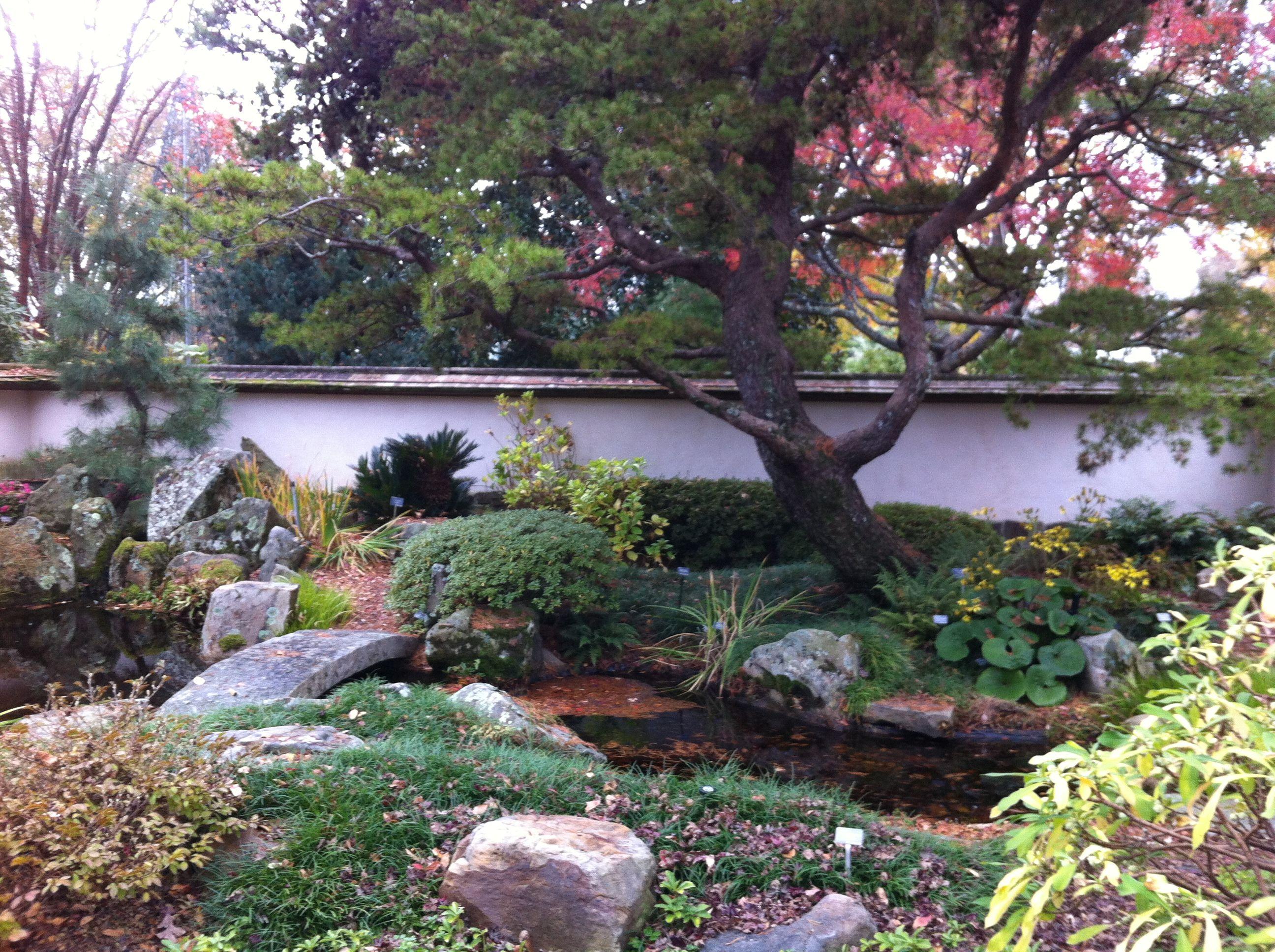 Atlanta Botanical Gardens Especially The Japanese Garden