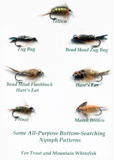 17 best images about fly patterns on pinterest | the fly, fly, Fly Fishing Bait