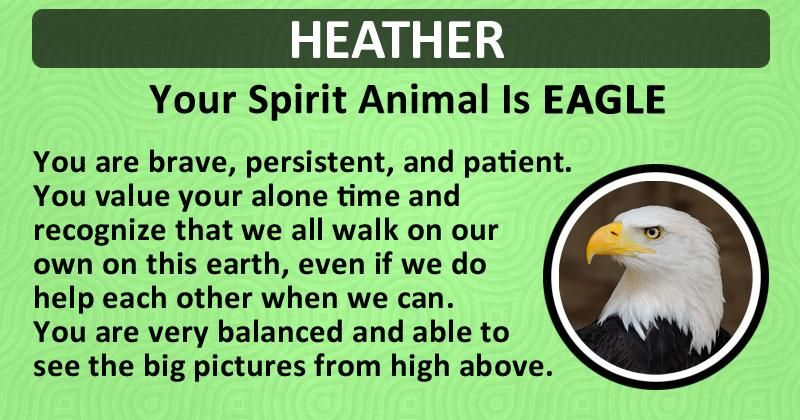 Find out what is your Spirit Animal! | Your spirit animal ...
