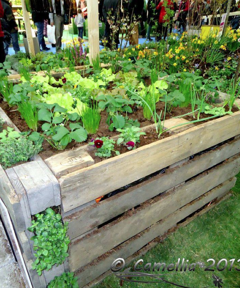 Upcycled herb and vegetable garden   Home & Gardens   Pinterest ...