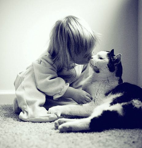 Image result for cats kissing kids