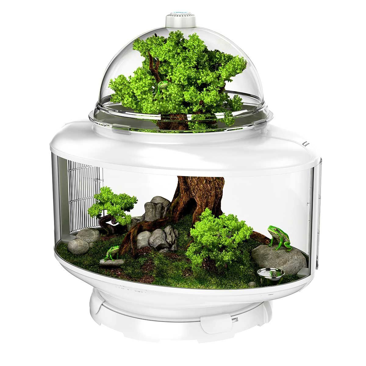 The biobubble terrarium is a groundbreaking habitat that introduces
