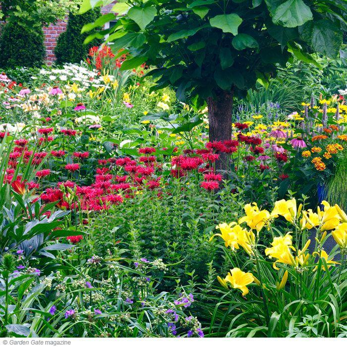 Clay Soil Plants, Plants, Backyard Plants